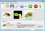 Flash Gallery Generator Image Theft Pengertian Macromedia Flash 8